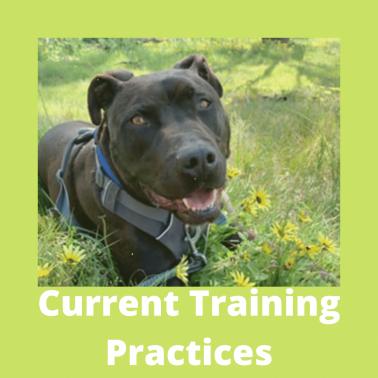 Current Training practices (2)