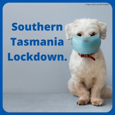 Hobart lockdown information.